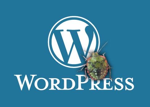 Webdev: Woher kommt das Memory-Limit-Problem bei WordPress?