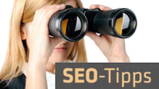 SEMSEO 2011: Die besten Profi-Tipps fürs Linkbuilding