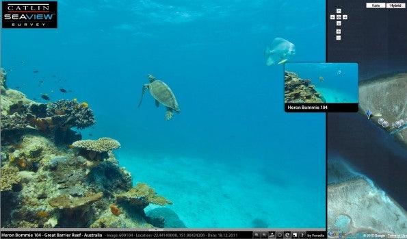 Mit dem Projekt SeaView will Google zusammen mit Wissenschaftlern Unterwasser-Sehenswürdigkeiten digital zugänglich machen (Bild: Catlin SeaView Survey).