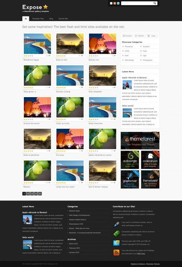 http://t3n.de/news/wp-content/uploads/2012/04/WordPress-Theme_ExposeGallery_1-595x874.jpg