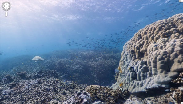 http://t3n.de/news/wp-content/uploads/2012/09/Google-SeaView-Great-Barrier-Reef-3-595x340.png