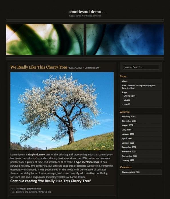 http://t3n.de/news/wp-content/uploads/2013/01/WordPress.comThemes_Chaoticsoul-595x694.jpg