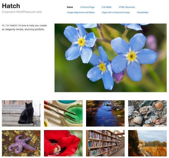 http://t3n.de/news/wp-content/uploads/2013/01/WordPress.comThemes_Hatch-595x555.jpg
