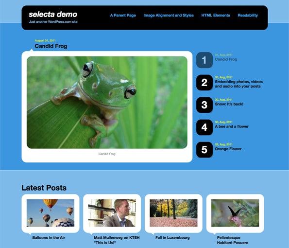 http://t3n.de/news/wp-content/uploads/2013/01/WordPress.comThemes_Selecta.png