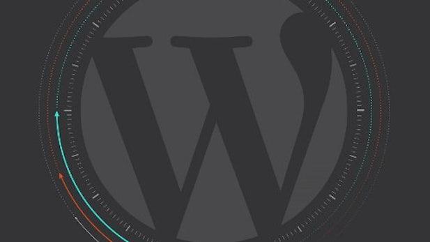 Infografik: So entwickelt sich WordPress