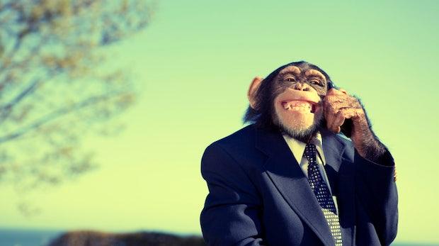 Warum uns Business-Affen das Leben unnötig schwer machen
