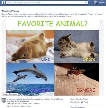 Facebook Newsfeed: Beiträge mit Like-Bait, Spam oder doppeltem Content werden ausgeblendet