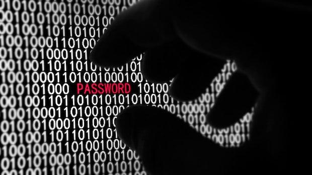 Hacker entwenden Nutzerdaten von DDoS-Dienst Lizard Stresser